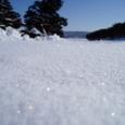 2008-02-01 光る雪