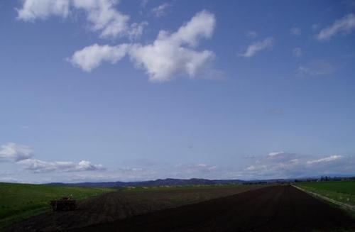耕される大地(2004/5/11)